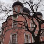 Большой собор Донской монастырь